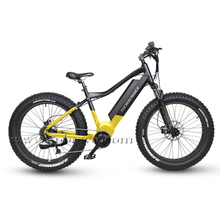 Powerful Bafang Mid Drive Motor Fat Tire Electric Bike for Sale