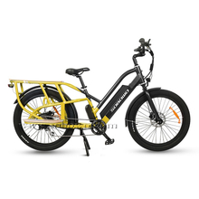 Model C19-2 Best Electric Cargo Bike of 2020