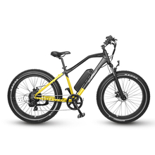 New-designed And Best Fat Tire Electric Bike for All Terrain