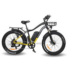Cheap Fat Tire Electric Bike for Sale