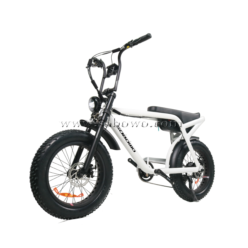 New Model Release--The introduction of Sobowo new electric bike model S82-1