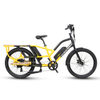 Model C19 Dual Batteries Long Tail Electric Assist Cargo Bike